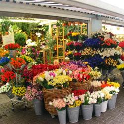 Anna-Maria´s Blumenladen