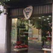 Enviar Flores A Reus Con Floristerias Locales En Spain