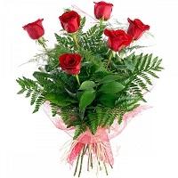Rosas rojas (6)