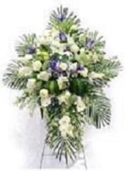 cruz blanca y lila