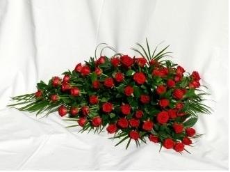 palma rosas rojas