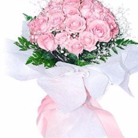 perfección rosa